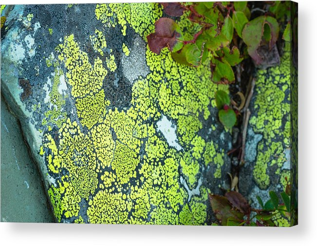 Abstract Acrylic Print featuring the photograph M O S A I C 14055 by Philip Esterle