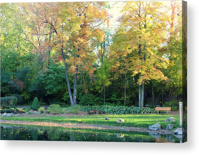 Fall Acrylic Print featuring the photograph Mae Stecker Park In Shelby Township Michigan by Anita Hiltz
