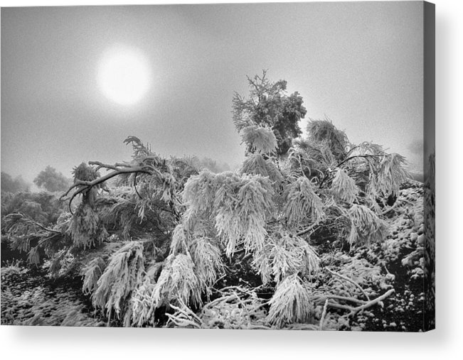Mono Acrylic Print featuring the photograph Magic Sunrise Morning by Guido Montanes Castillo