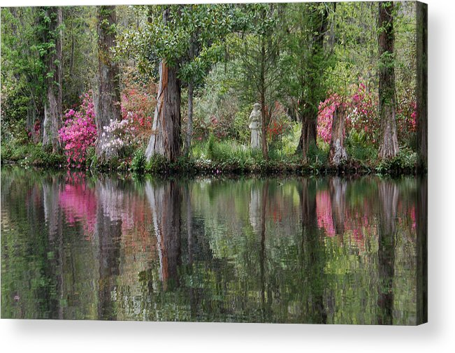 Magnolia Plantation Acrylic Print featuring the photograph Magnolia Plantation Gardens Series Iv by Suzanne Gaff