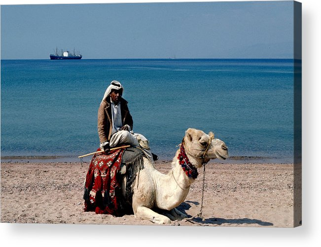 Dromedary Acrylic Print featuring the photograph Man With Camel At Red Sea by Carl Purcell