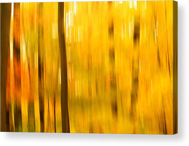 Abstract Photo Acrylic Print featuring the photograph Maple Magic by Bill Morgenstern