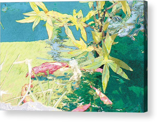 Koi Acrylic Print featuring the photograph Marry-go-round Kio In The Spring-may Day by Judy Loper