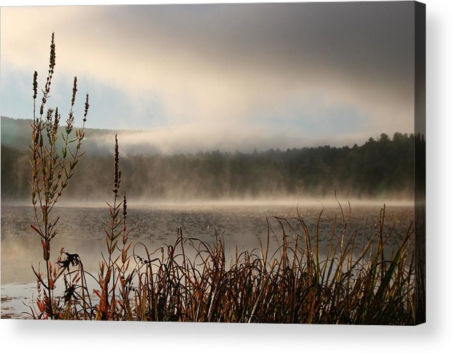 Misty Morning Acrylic Print featuring the photograph Misty Morning by Linda Russell