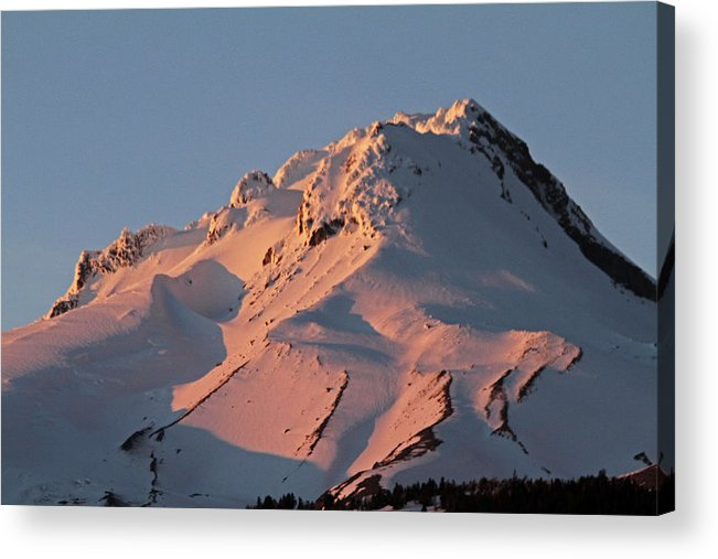 Pink Acrylic Print featuring the photograph Mount Hood Sunset Glow by Tammy Hankins
