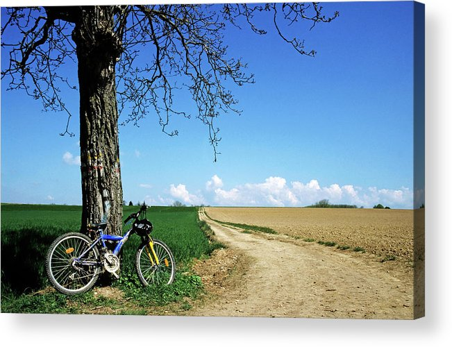 Absence Acrylic Print featuring the photograph Mountain Bike Under A Tree Beside Dirt Road by Sami Sarkis