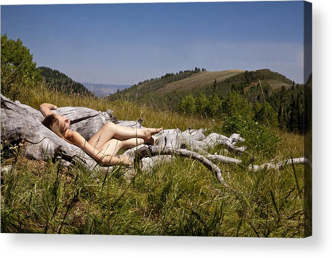 Nude Acrylic Print featuring the photograph Mountain Meadow I by David Schroeder