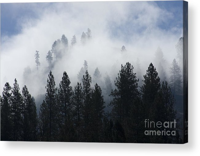 Fog Acrylic Print featuring the photograph Mountain Mist by Idaho Scenic Images Linda Lantzy