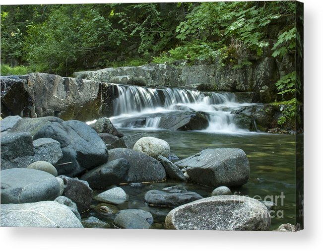 Stream Acrylic Print featuring the photograph Mountain Stream by Idaho Scenic Images Linda Lantzy