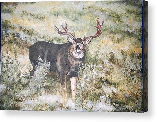 Mule Deer Acrylic Print featuring the painting Muley by Debra Sandstrom