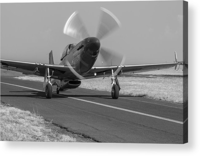 Mustang Acrylic Print featuring the photograph Mustang by Garth Naude