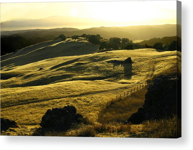 Nappa Valley Acrylic Print featuring the photograph Napa Valley by Hans Jankowski
