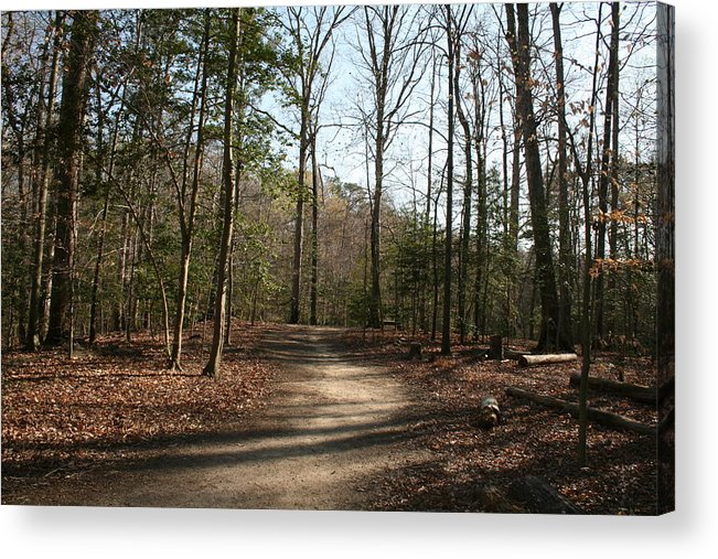 Landscape Acrylic Print featuring the photograph Newport News Park 2 by Aimee Galicia Torres