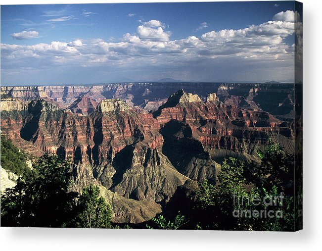 Grand Canyon; National Parks Acrylic Print featuring the photograph North Rim by Kathy McClure