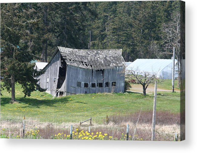 Photograph Acrylic Print featuring the photograph Old Oak Harbor Barn Ba 9209 by Mary Gaines