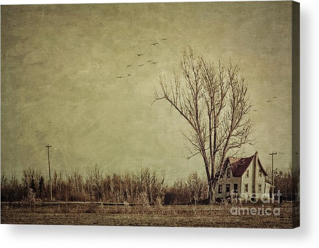 Aged Acrylic Print featuring the photograph Old Rural Farmhouse With Grunge Feeling by Sandra Cunningham