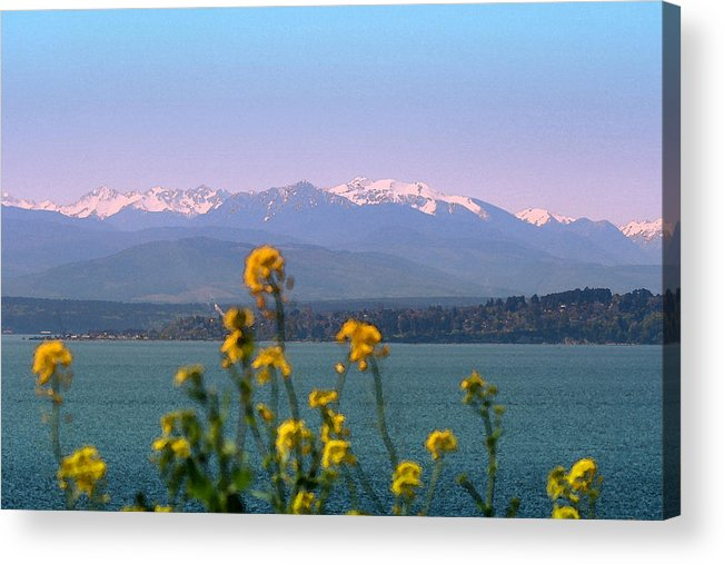 Olympics Acrylic Print featuring the photograph Olympic Mtn. M1001 by Mary Gaines