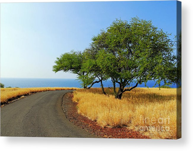 Road Acrylic Print featuring the photograph On The Road To Lapakahi by Jennifer Robin