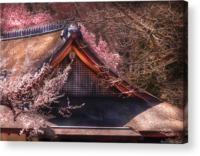 Savad Acrylic Print featuring the photograph Orient - Shofuso House by Mike Savad