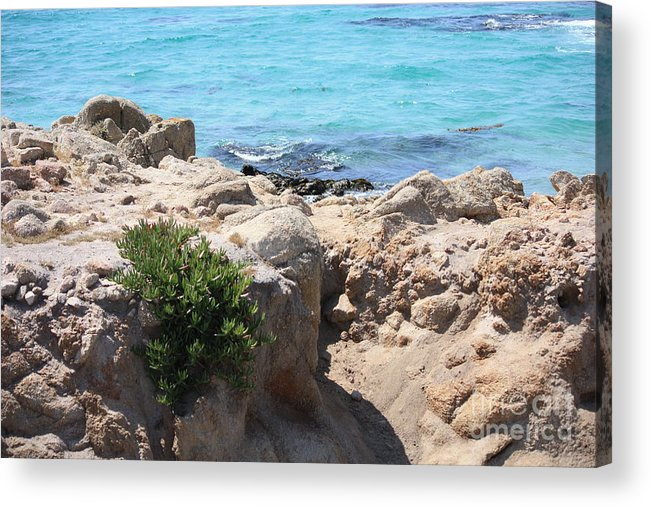California Acrylic Print featuring the photograph Pacific Blue by Carol Groenen