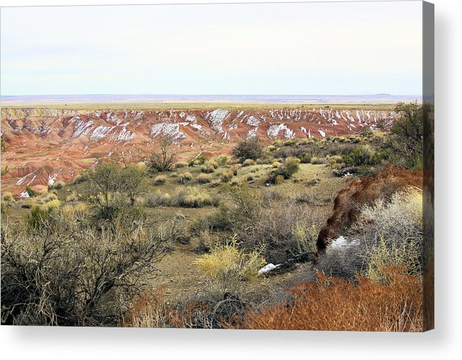 Photography Acrylic Print featuring the photograph Painted Desert Winter 0571 by Sharon Broucek