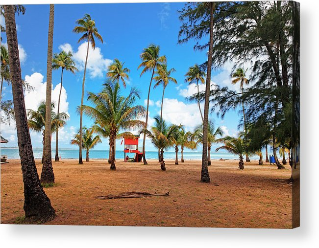 Balneario Acrylic Print featuring the photograph Palm Covered Tropical Beach by George Oze