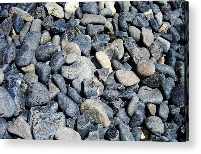Acrylic Print featuring the photograph Pebbles by Jacqueline Doulis
