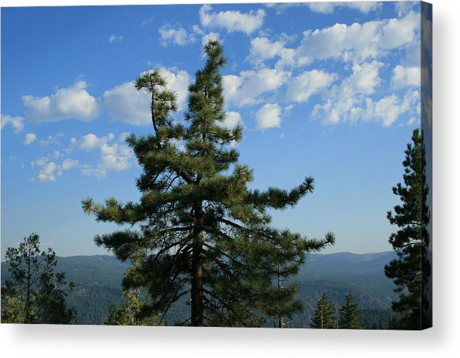 Veiw Acrylic Print featuring the photograph Perfect View by Joshua Sunday
