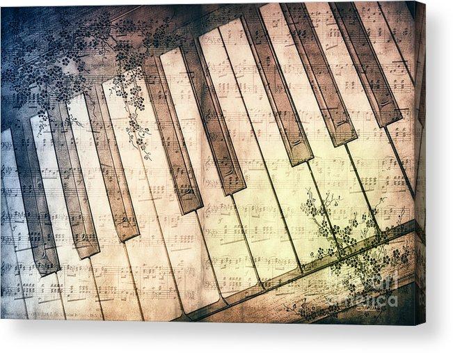 Photo Acrylic Print featuring the photograph Piano Days by Jutta Maria Pusl