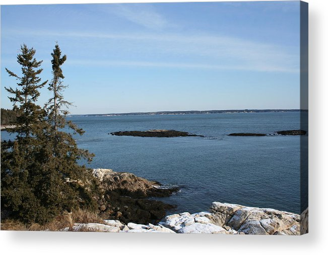 Landscape Acrylic Print featuring the photograph Pine Coast by Doug Mills