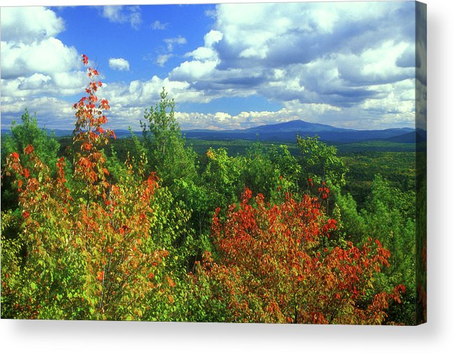 New Hampshire Acrylic Print featuring the photograph Pisgah State Park Foliage by John Burk