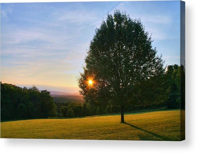Landscape Acrylic Print featuring the photograph Poetry Of Nature by Mitch Cat