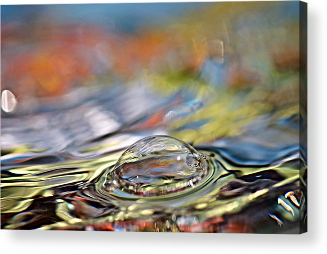 Water Acrylic Print featuring the photograph Pop Me by Lisa Knechtel