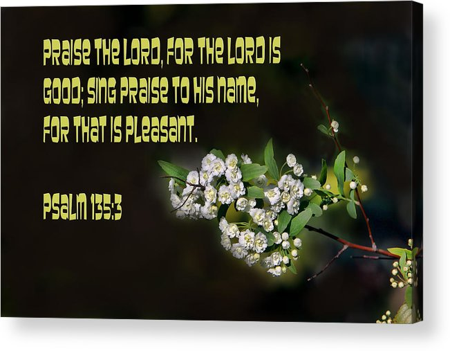 Scripture Acrylic Print featuring the photograph Psalms One Hundred Thirty Five Vs Three by Linda Phelps