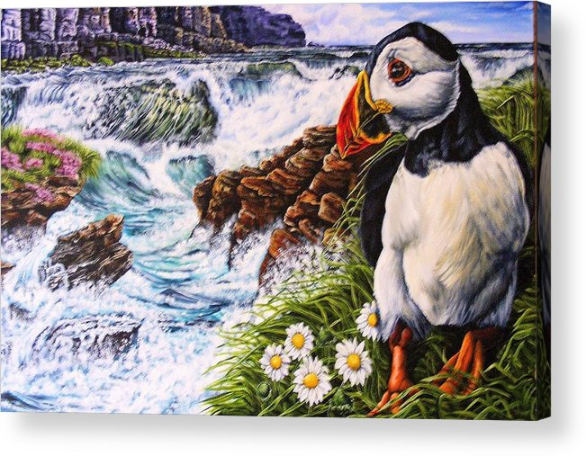 Puffin Acrylic Print featuring the painting Puffin Peace by Donald Dean