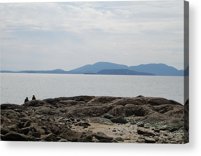 Islands Acrylic Print featuring the photograph Puget Sound Islands by J D Banks