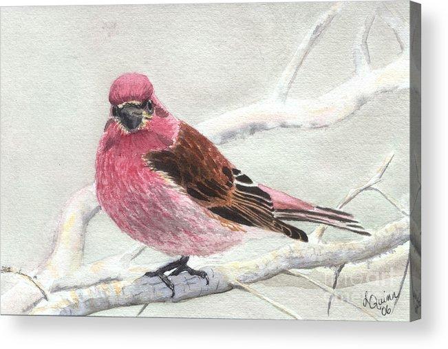 Bird Acrylic Print featuring the painting Purple Finch by Lynn Quinn