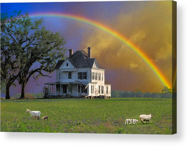Landscapes Acrylic Print featuring the photograph Rainbow Meadow by Jan Amiss Photography