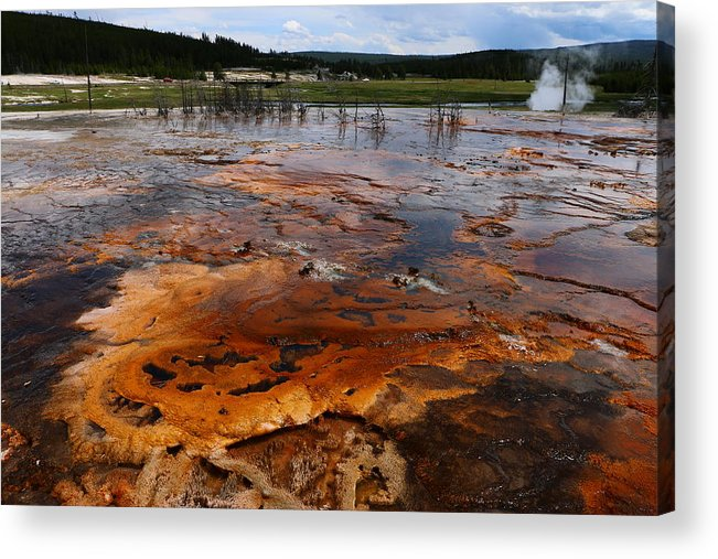 Geyser Acrylic Print featuring the photograph Rainbow Pool - Yellowstone Np by Christiane Schulze Art And Photography