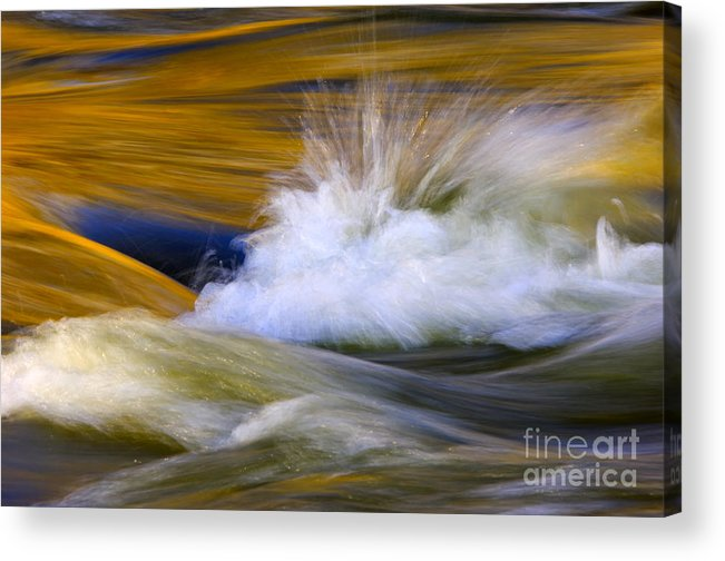 River Acrylic Print featuring the photograph River by Silke Magino
