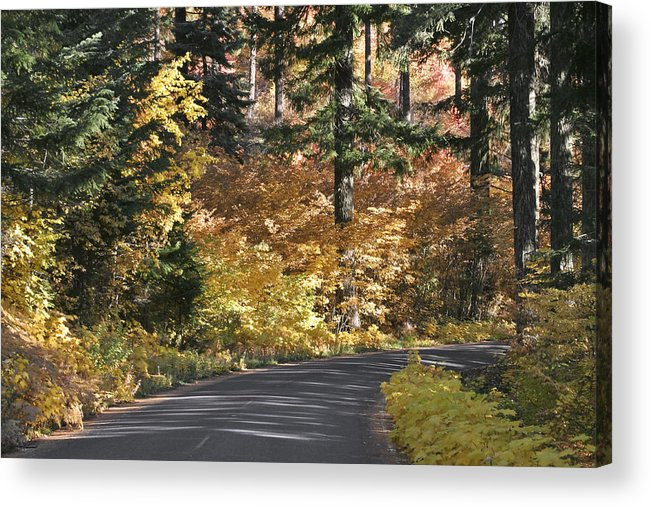 Road To Autumn Acrylic Print featuring the photograph Road To Autumn by Wes and Dotty Weber