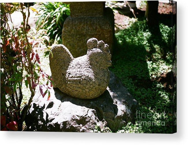 Stone Acrylic Print featuring the photograph Rooster by Dean Triolo