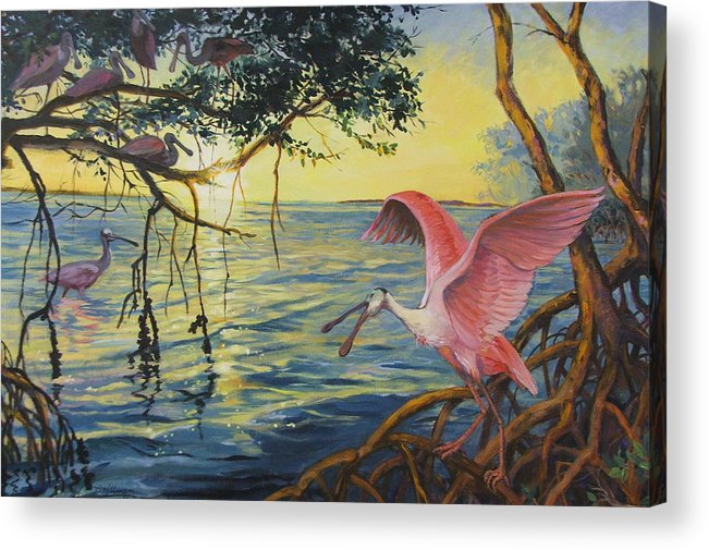 Acrylic Painting Acrylic Print featuring the painting Roseate Spoonbills Among The Mangroves by Dianna Willman
