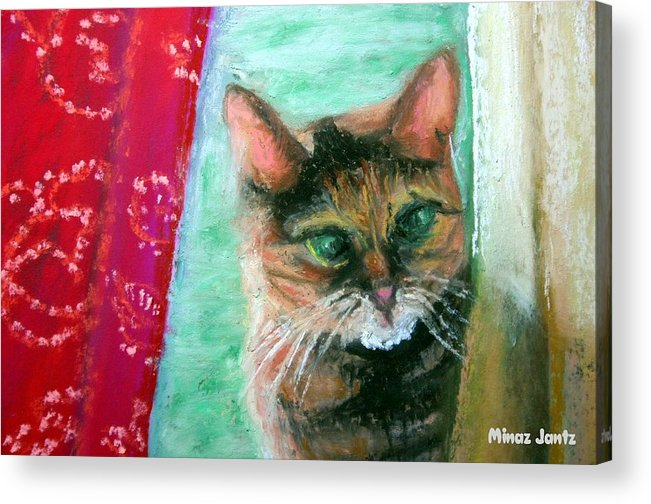 Cat Acrylic Print featuring the painting Rosy In Color by Minaz Jantz