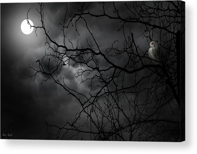 Ruler Of The Night Acrylic Print By Lourry Legarde