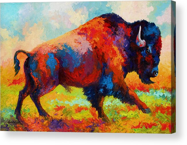 Bison Acrylic Print featuring the painting Running Free - Bison by Marion Rose