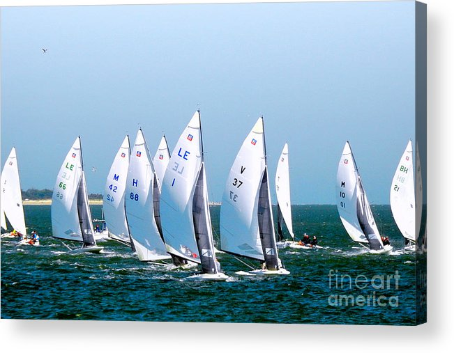 E-scows Acrylic Print featuring the photograph Sailboat Championship Regatta by Scott Cameron