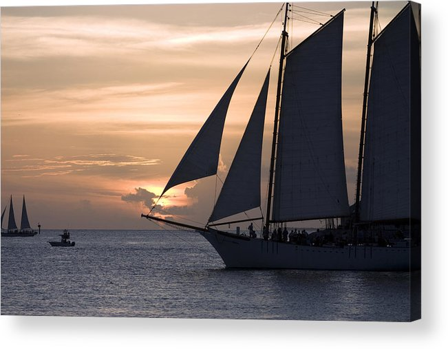 Horizontal Acrylic Print featuring the photograph Sailing In Key West At Sunset by Christopher Purcell