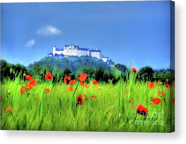 Nikon Acrylic Print featuring the photograph Salzburg Poppies by Luke Griffin