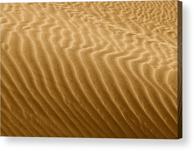 Sand Acrylic Print featuring the photograph Sand Dune Mojave Desert California by Christine Till